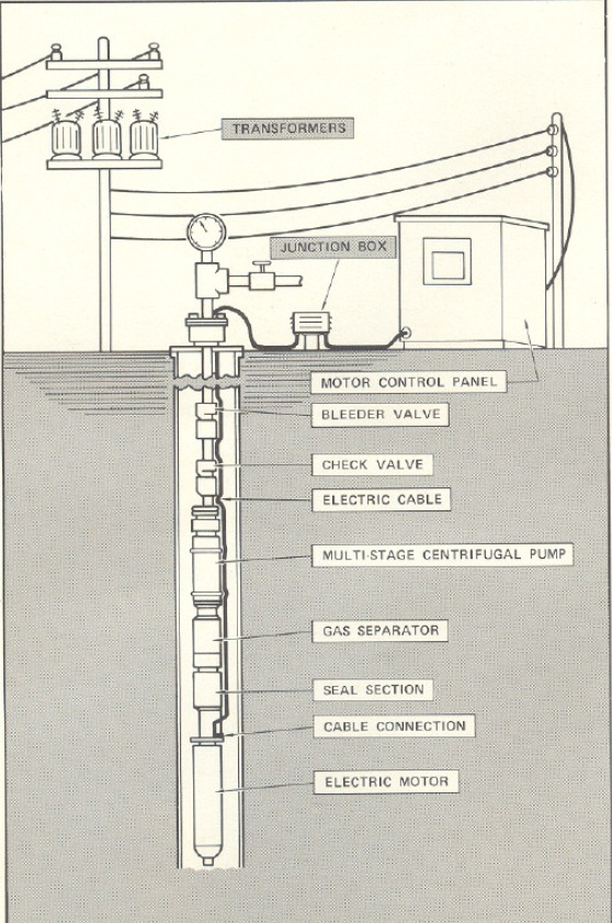 TYPICAL ELECTRIC SUBMERSIBLE PUMPING SYSTEM