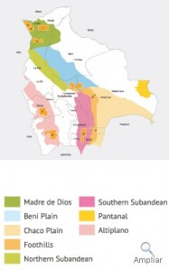CUENCAS PETROLIFERAS DE BOLIVIA