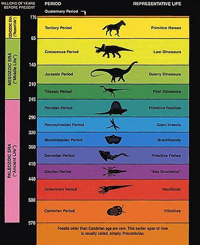 GEOLOGIC AGE